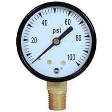 Ametek Pressure Gauge Series P500