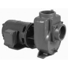 Griswold Series H Self Priming Centrifugal Pump