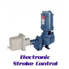 Neptune Electric Stroke Control