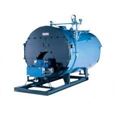 Burnham Commercial Series 3 Boiler